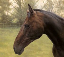 Horse Oil Portrait
