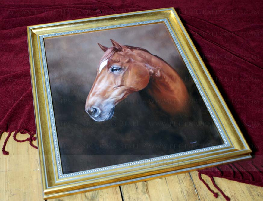 Horse Portraits Framed
