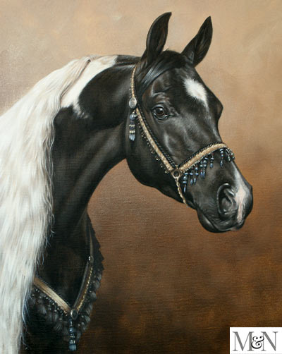 Horse Portrait In Oils By Nick Beall