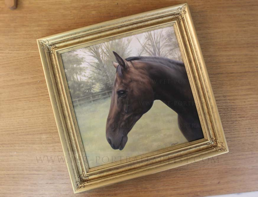 Horse Pet Paintings Framed