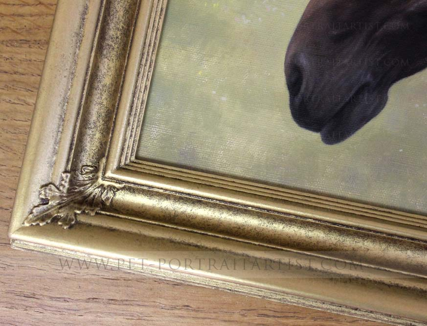 Horse Pet Paintings Framed Detail