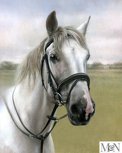 horse pet portrait