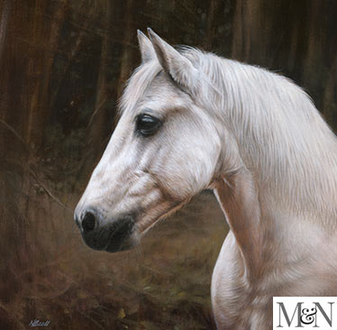 horse pet portraits