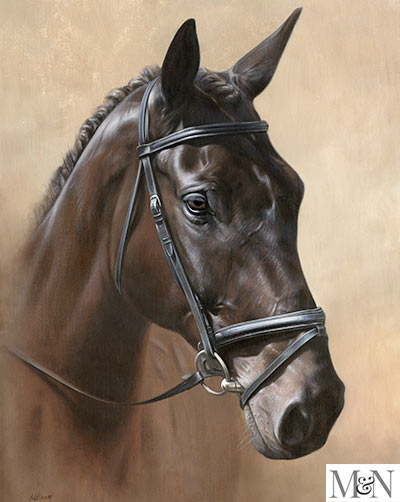 horse portrait oils