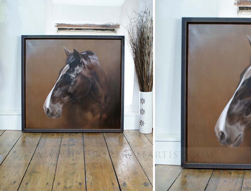 Framed horse portraits