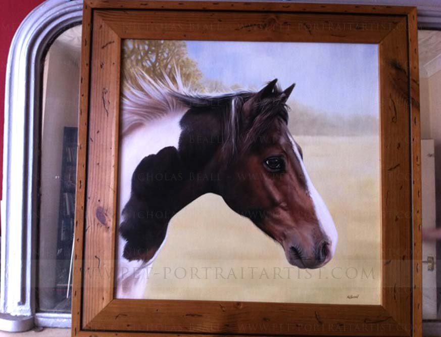 Happy Client testimonial of horse portraits
