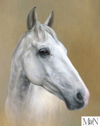 pet portraits horse