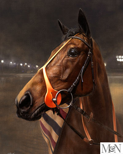 racehorse pet portraits