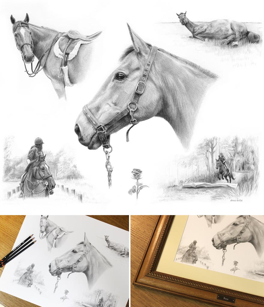 Montage Horse in Pencil