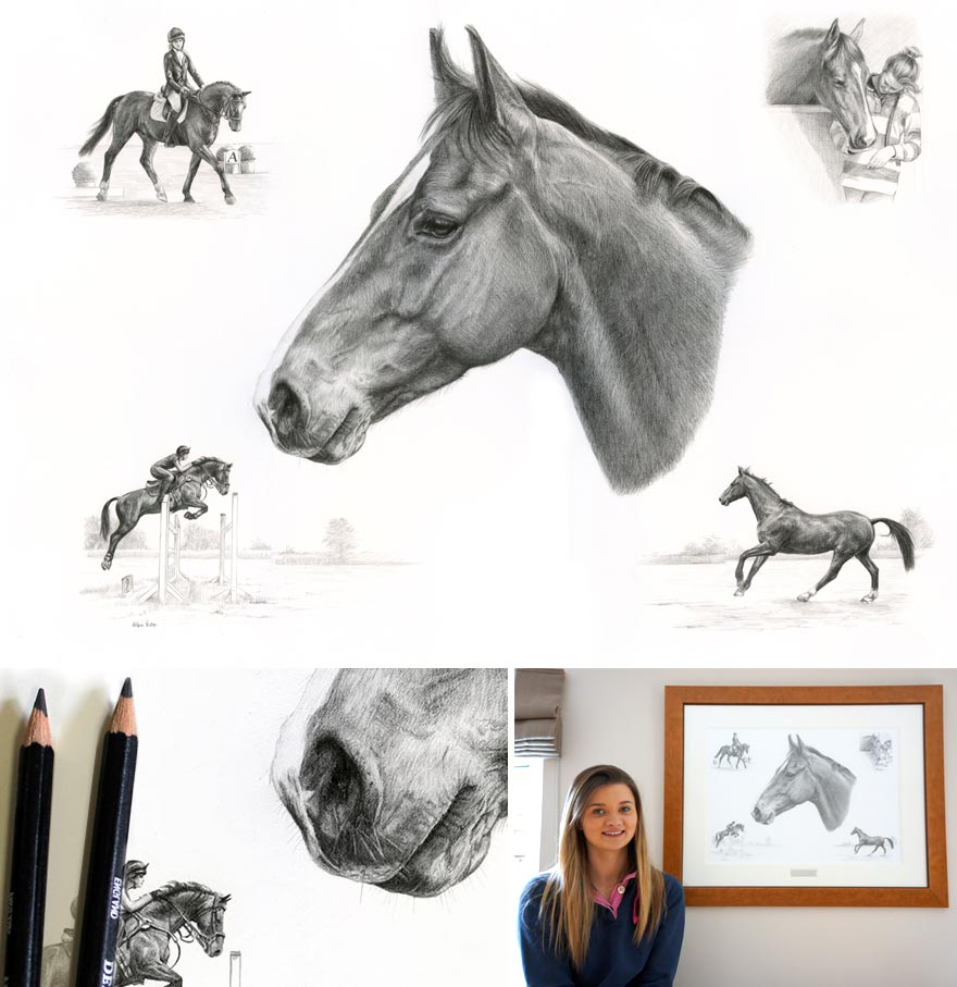 Pencil Portraits Montage Horse